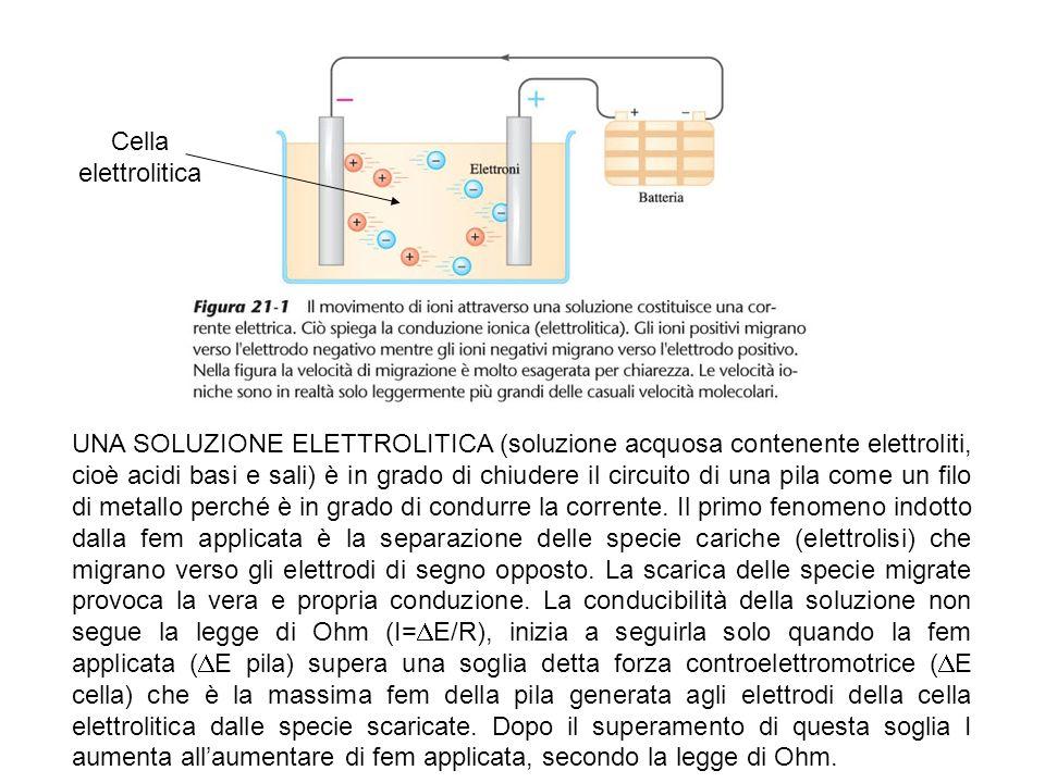 Cella elettrolitica