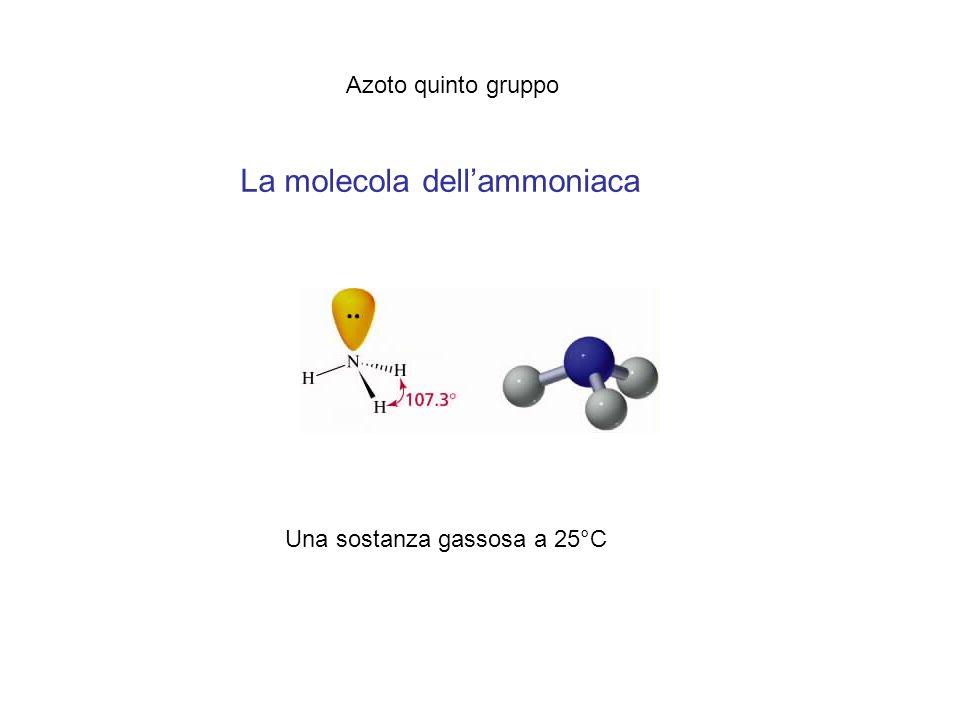 La molecola dell'ammoniaca