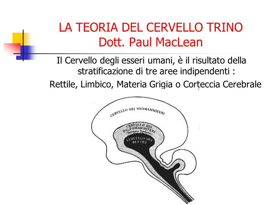 LA TEORIA DEL CERVELLO TRINO Dott. Paul MacLean