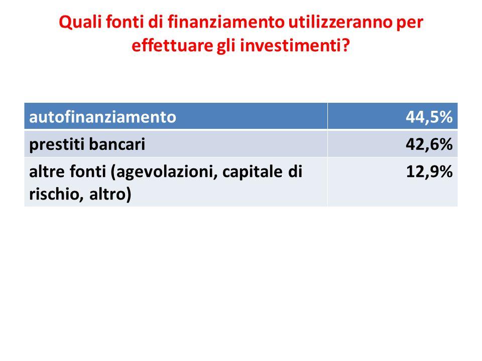 Quali fonti di finanziamento utilizzeranno per effettuare gli investimenti