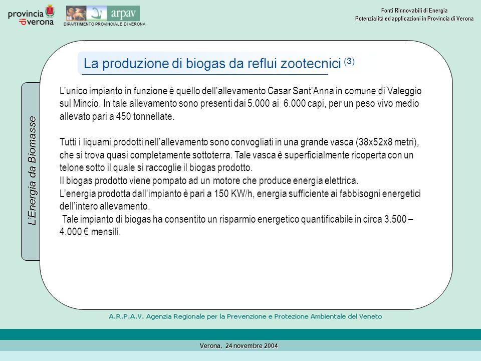 La produzione di biogas da reflui zootecnici (3)
