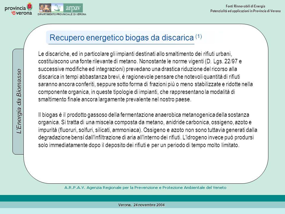 Recupero energetico biogas da discarica (1)