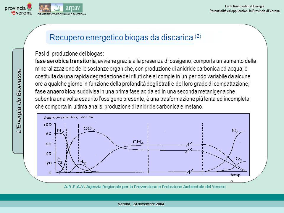Recupero energetico biogas da discarica (2)