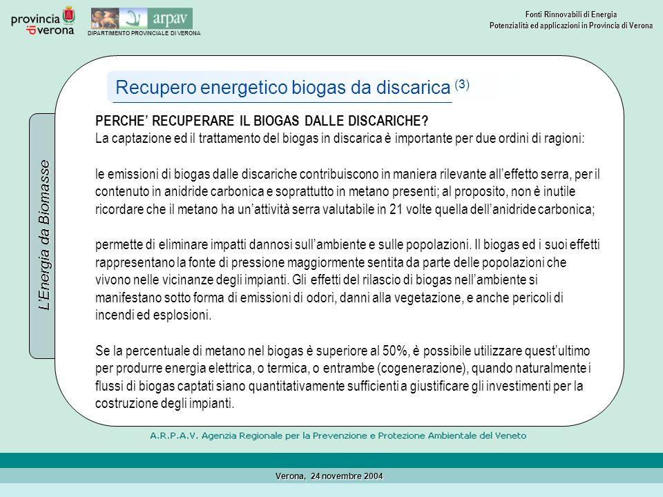 Recupero energetico biogas da discarica (3)