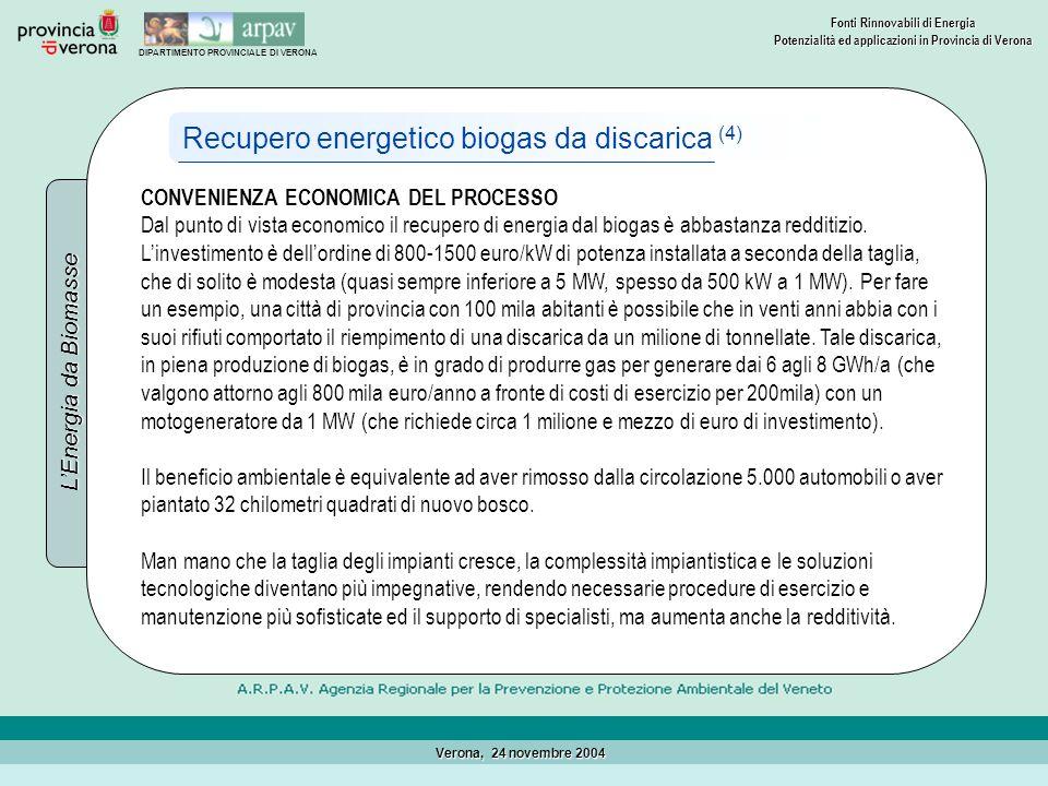 Recupero energetico biogas da discarica (4)