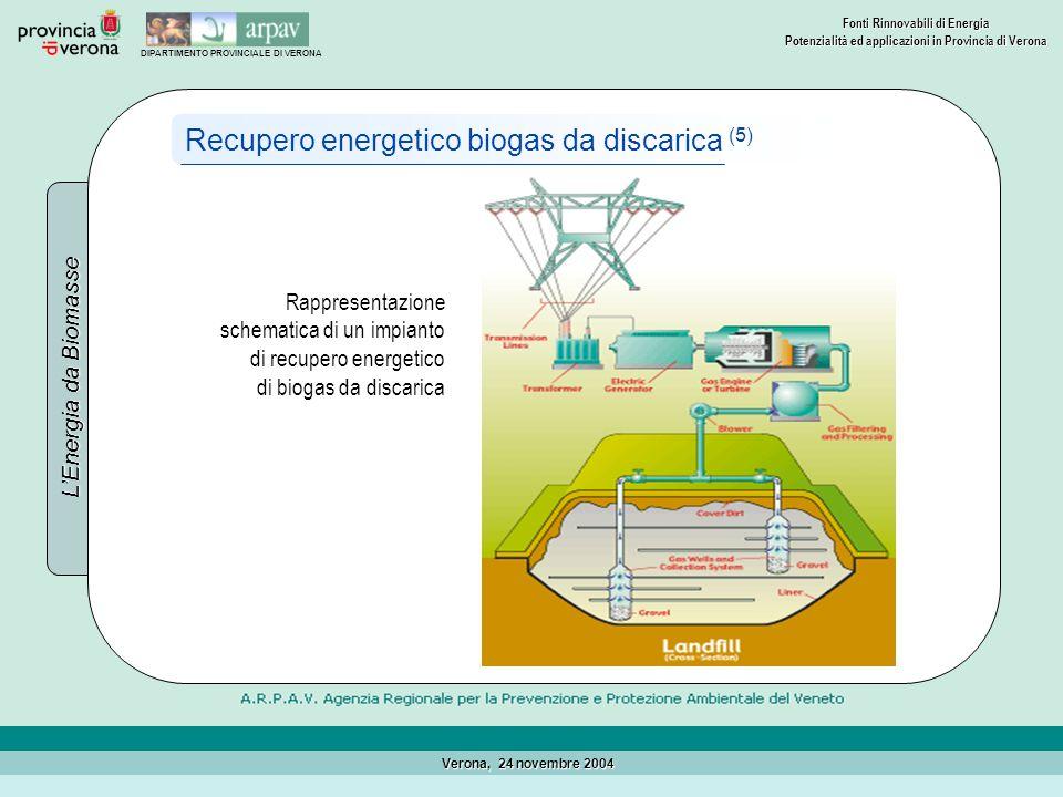 Recupero energetico biogas da discarica (5)
