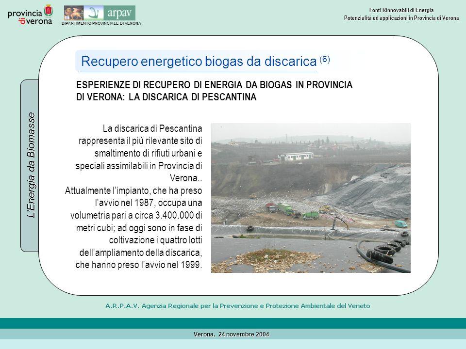 Recupero energetico biogas da discarica (6)