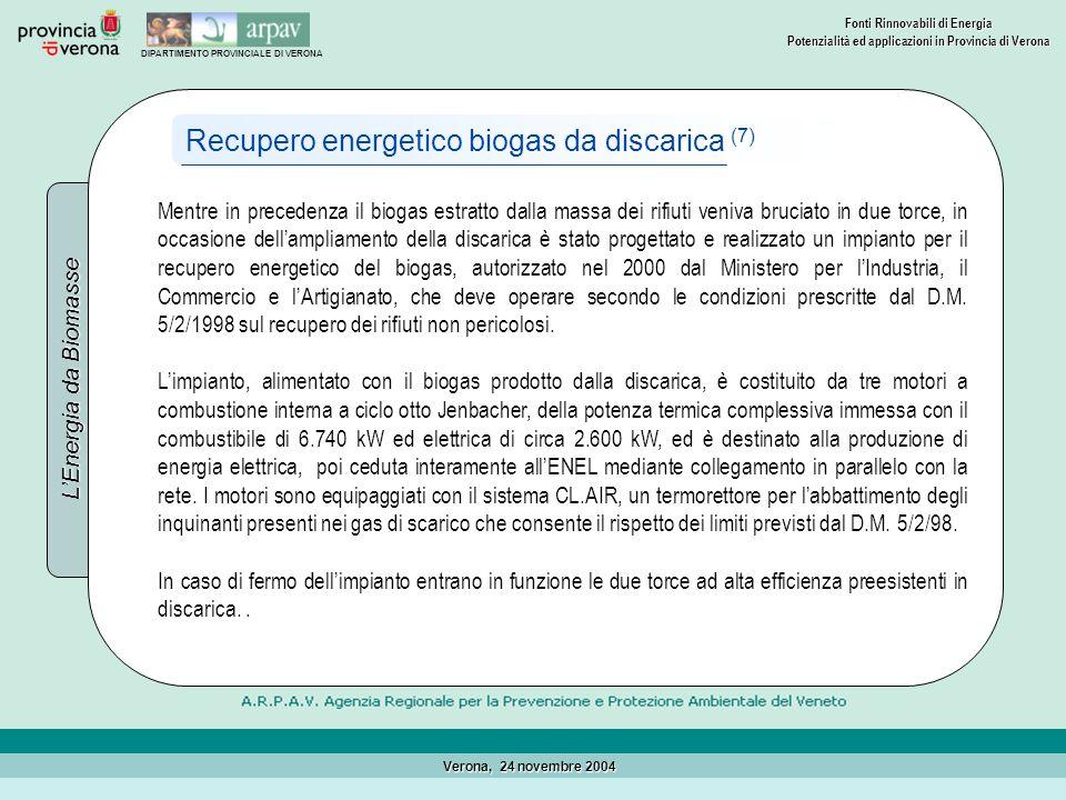 Recupero energetico biogas da discarica (7)