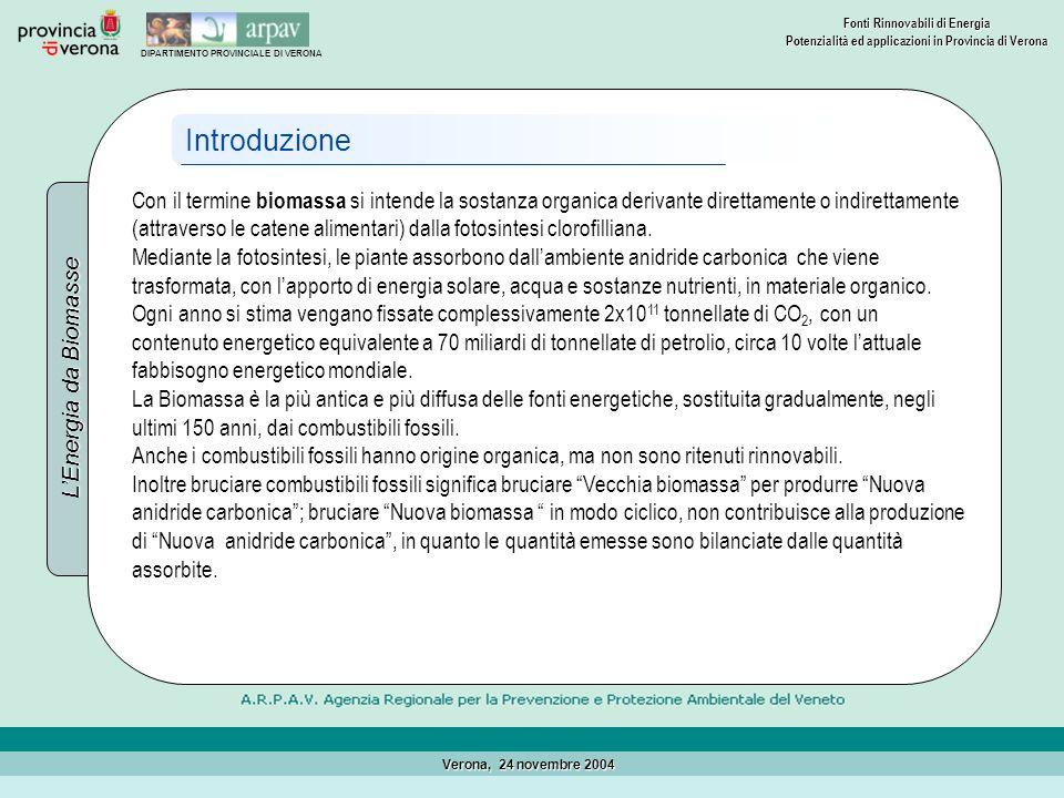 Introduzione L'Energia da Biomasse.