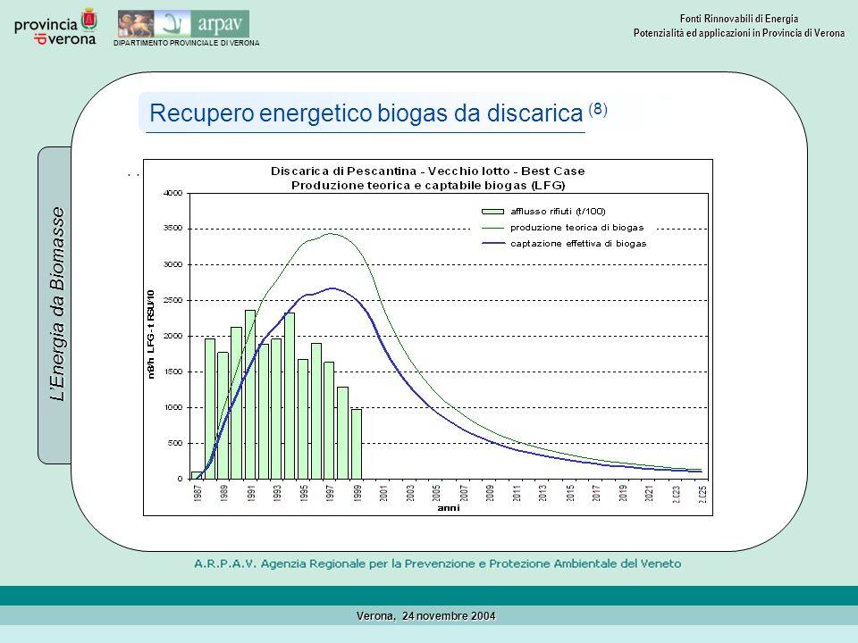 Recupero energetico biogas da discarica (8)