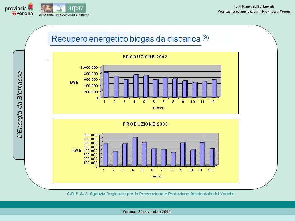 Recupero energetico biogas da discarica (9)