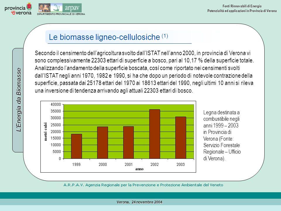 Le biomasse ligneo-cellulosiche (1)