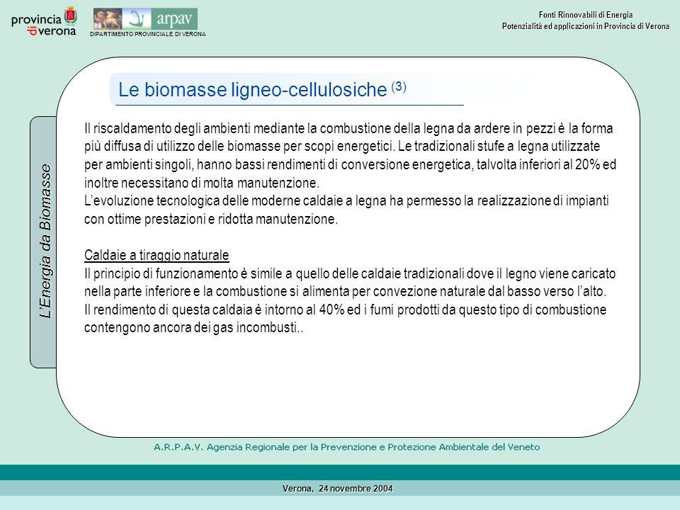 Le biomasse ligneo-cellulosiche (3)