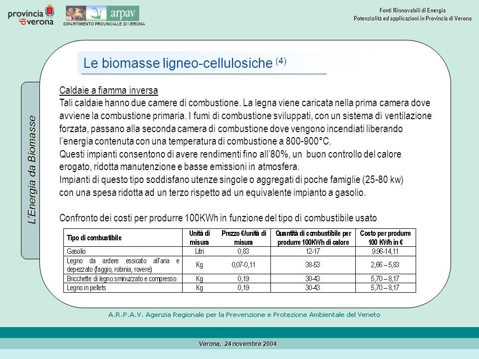 Le biomasse ligneo-cellulosiche (4)