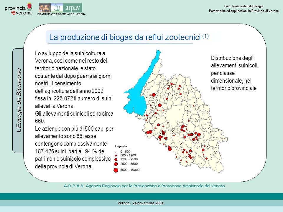 La produzione di biogas da reflui zootecnici (1)
