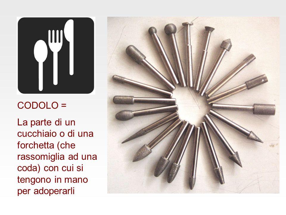 CODOLO = La parte di un cucchiaio o di una forchetta (che rassomiglia ad una coda) con cui si tengono in mano per adoperarli.