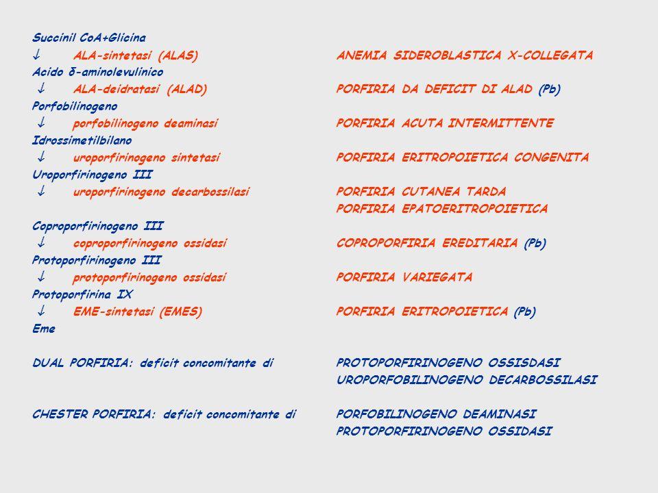 Succinil CoA+Glicina  ALA-sintetasi (ALAS) ANEMIA SIDEROBLASTICA X-COLLEGATA. Acido δ-aminolevulinico.
