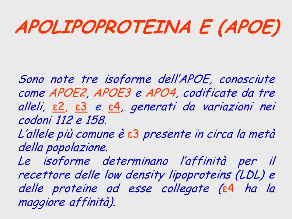 APOLIPOPROTEINA E (APOE)