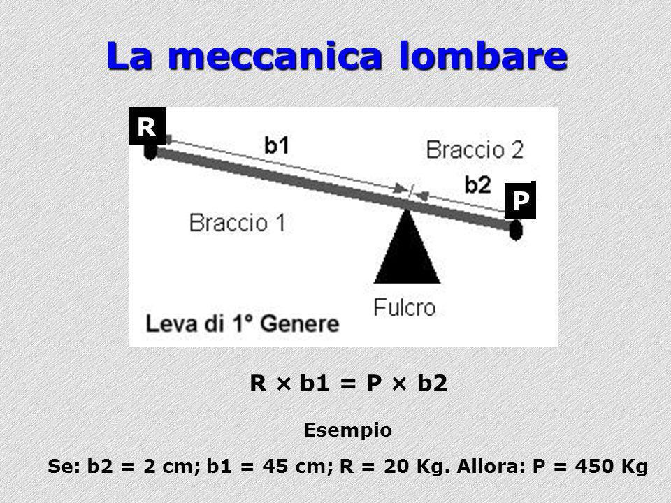 Se: b2 = 2 cm; b1 = 45 cm; R = 20 Kg. Allora: P = 450 Kg
