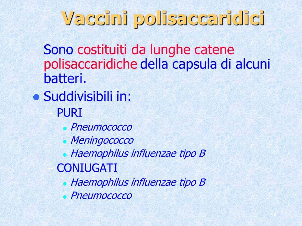 Vaccini polisaccaridici
