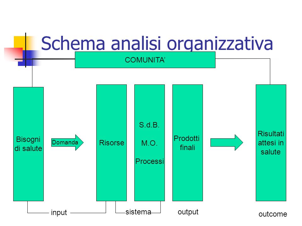 Schema analisi organizzativa