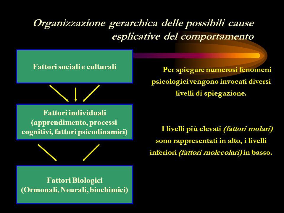 Organizzazione gerarchica delle possibili cause esplicative del comportamento