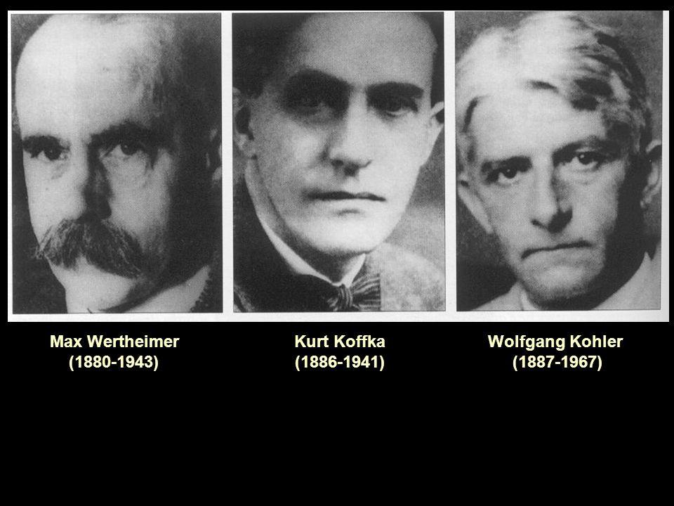 Max Wertheimer (1880-1943) Kurt Koffka (1886-1941) Wolfgang Kohler (1887-1967)