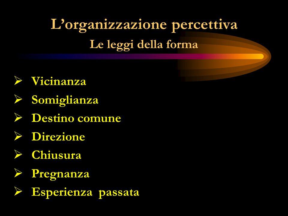 L'organizzazione percettiva