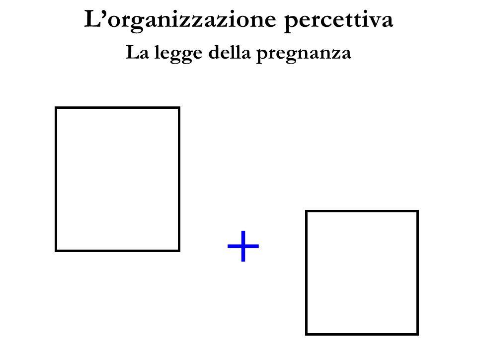 L'organizzazione percettiva La legge della pregnanza