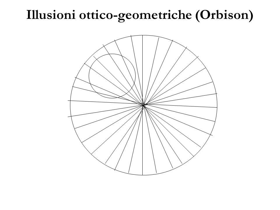 Illusioni ottico-geometriche (Orbison)