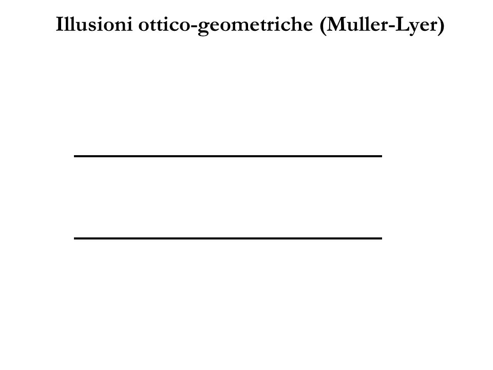 Illusioni ottico-geometriche (Muller-Lyer)