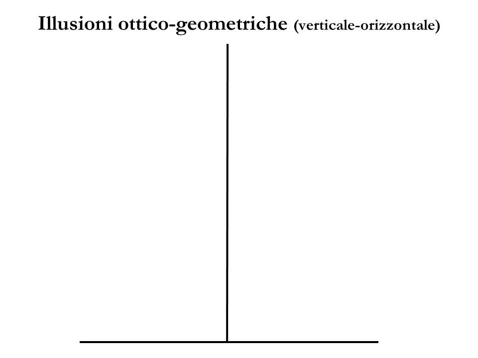 Illusioni ottico-geometriche (verticale-orizzontale)
