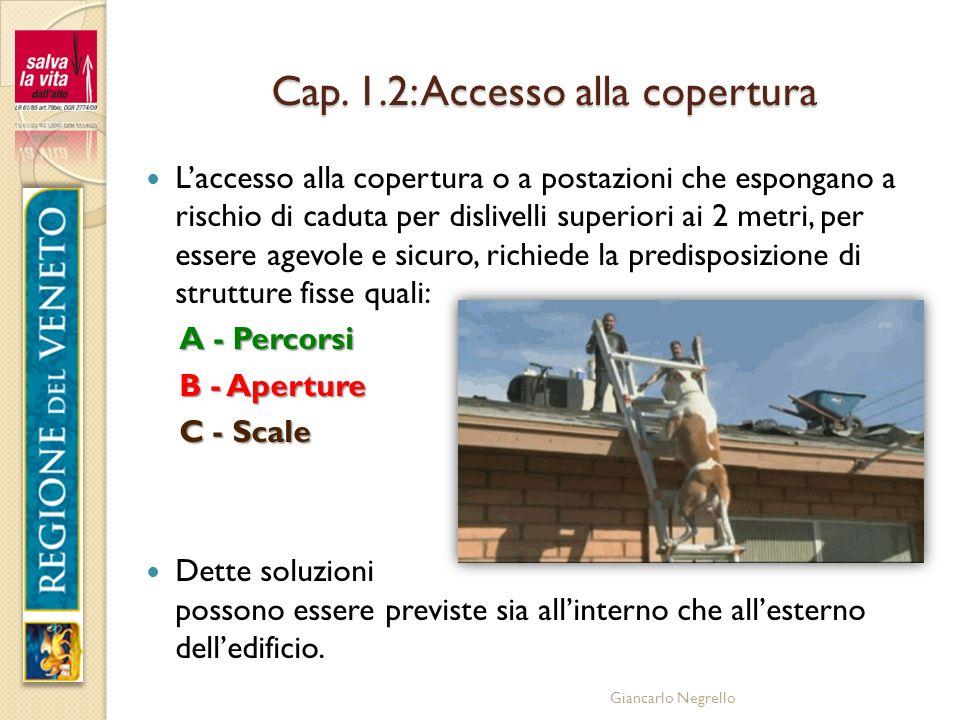 Cap. 1.2: Accesso alla copertura