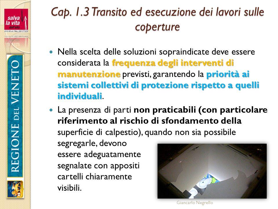 Cap. 1.3 Transito ed esecuzione dei lavori sulle coperture