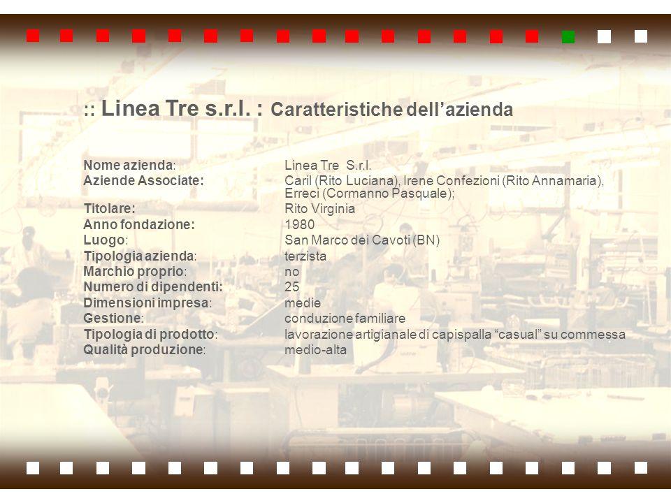 :: Linea Tre s.r.l. : Caratteristiche dell'azienda