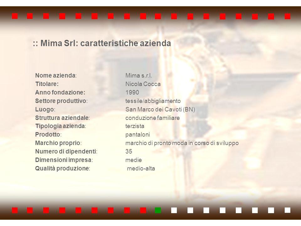 :: Mima Srl: caratteristiche azienda