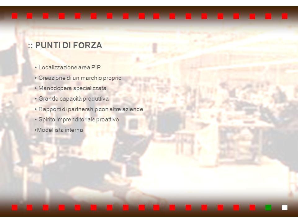 :: PUNTI DI FORZA Localizzazione area PIP