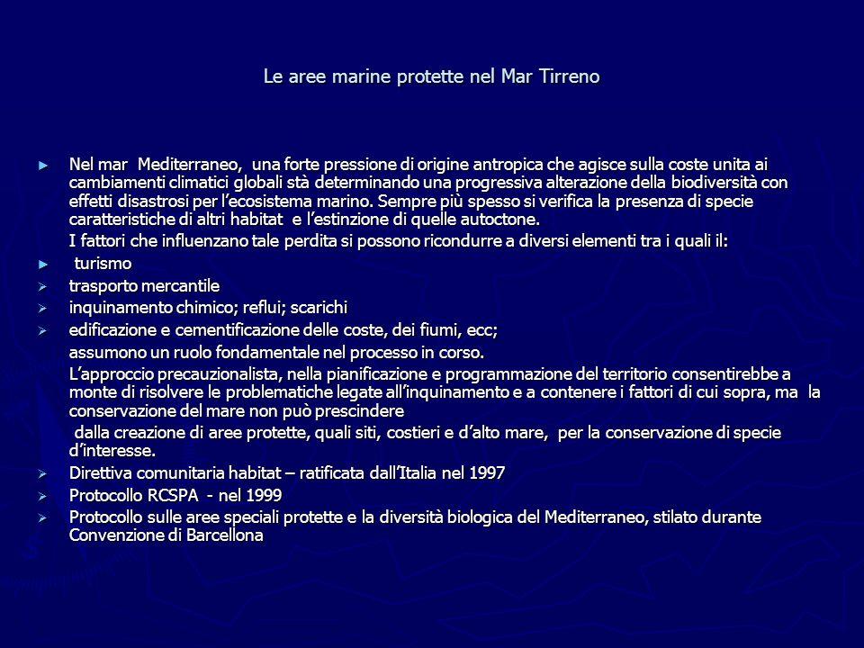 Le aree marine protette nel Mar Tirreno