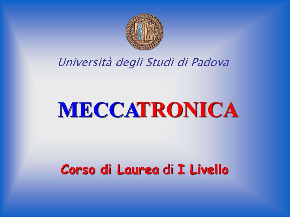 MECCA TRONICA Corso di Laurea di I Livello