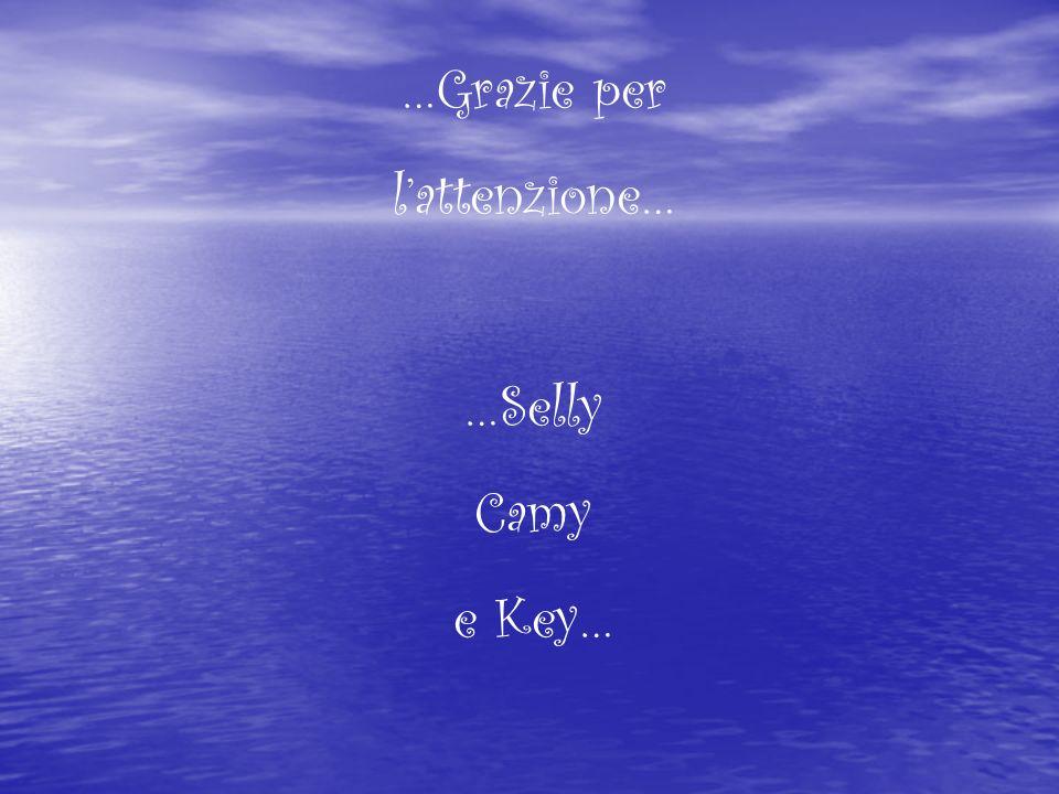 …Grazie per l'attenzione… …Selly Camy e Key…