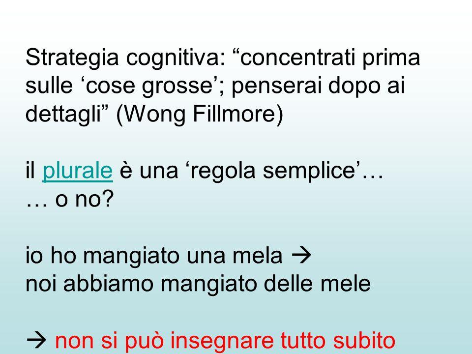 Strategia cognitiva: concentrati prima sulle 'cose grosse'; penserai dopo ai dettagli (Wong Fillmore)