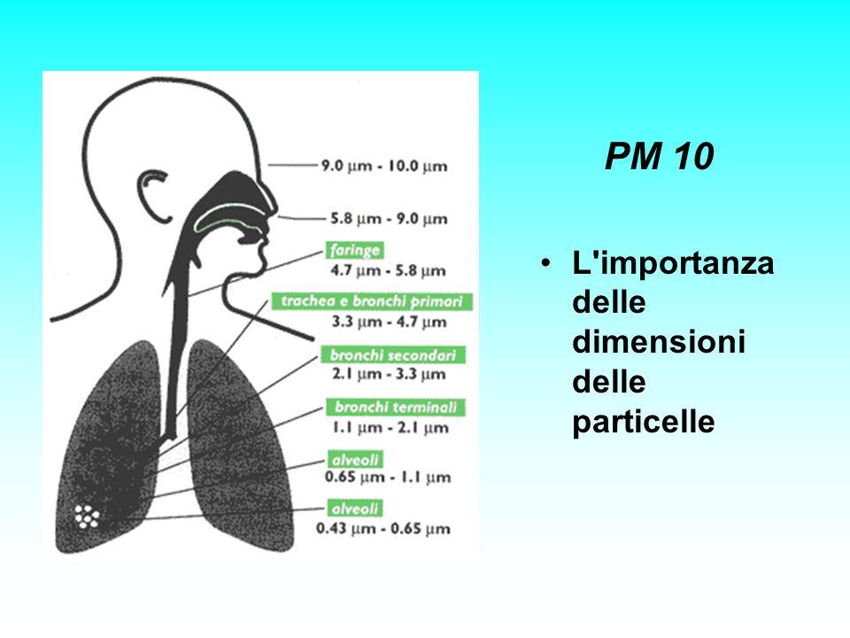 PM 10 L importanza delle dimensioni delle particelle