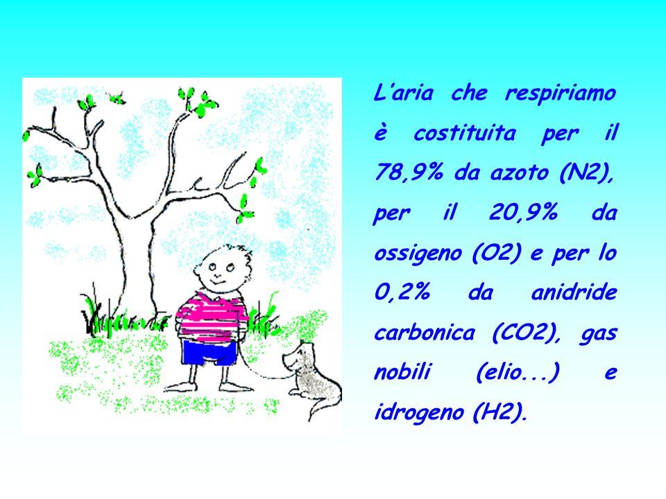 L'aria che respiriamo è costituita per il 78,9% da azoto (N2), per il 20,9% da ossigeno (O2) e per lo 0,2% da anidride carbonica (CO2), gas nobili (elio...) e idrogeno (H2).