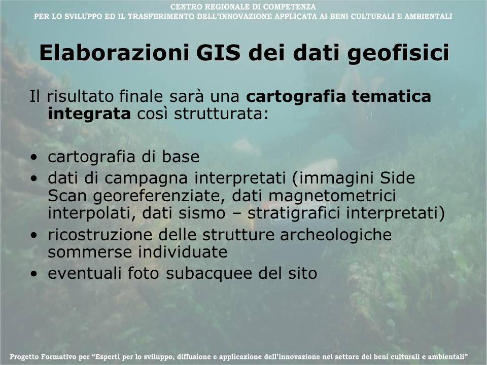 Elaborazioni GIS dei dati geofisici