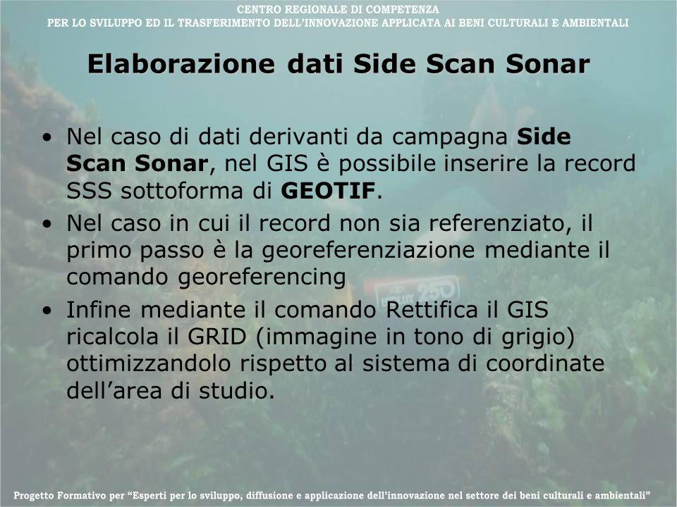 Elaborazione dati Side Scan Sonar