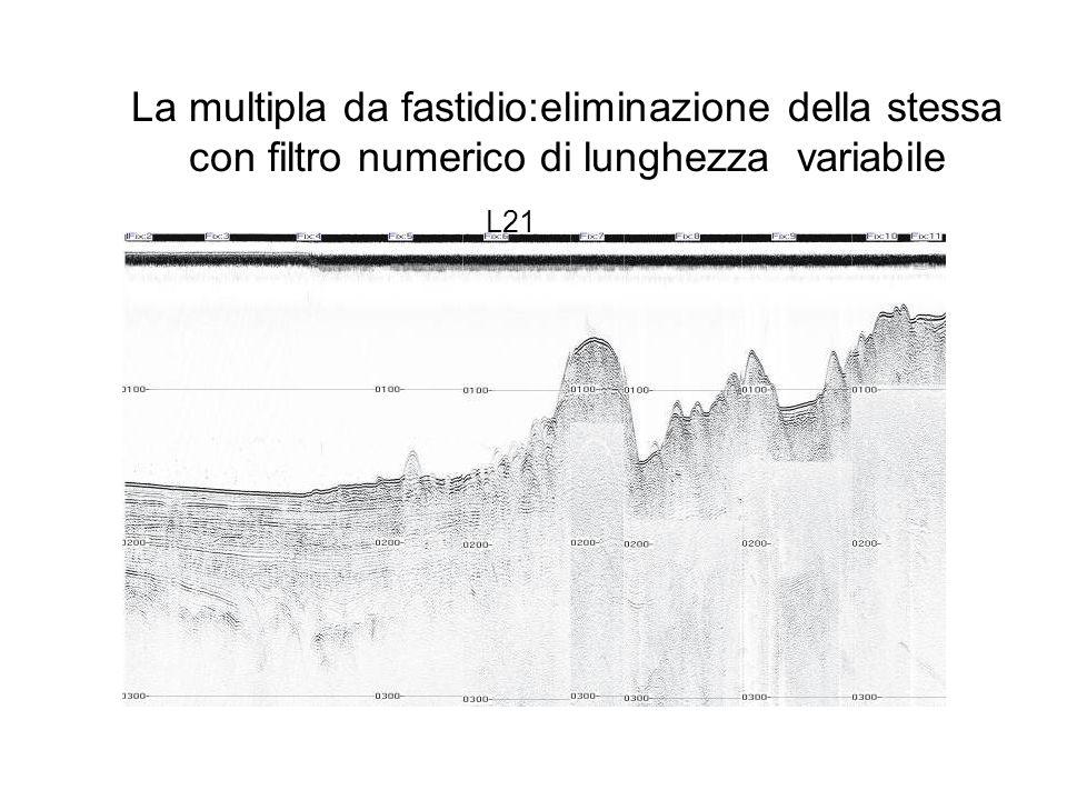 La multipla da fastidio:eliminazione della stessa con filtro numerico di lunghezza variabile