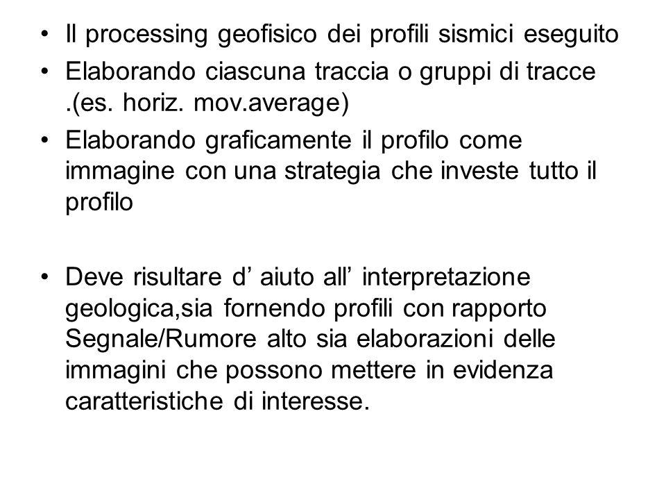 Il processing geofisico dei profili sismici eseguito