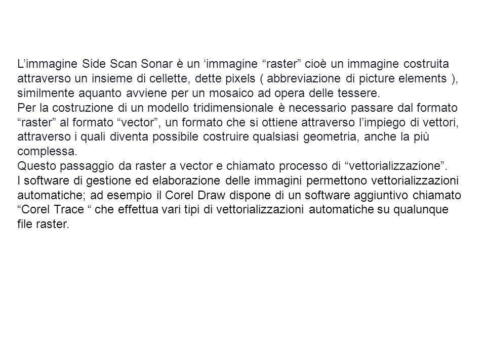 L'immagine Side Scan Sonar è un 'immagine raster cioè un immagine costruita
