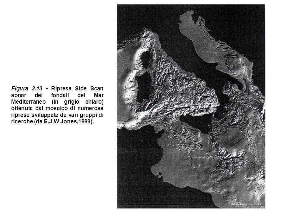 Figura 2.13 - Ripresa Side Scan sonar dei fondali del Mar Mediterraneo (in grigio chiaro) ottenuta dal mosaico di numerose riprese sviluppate da vari gruppi di ricerche (da E.J.W Jones,1999).