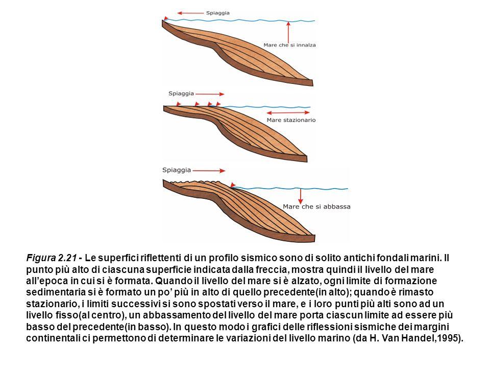 Figura 2.21 - Le superfici riflettenti di un profilo sismico sono di solito antichi fondali marini.